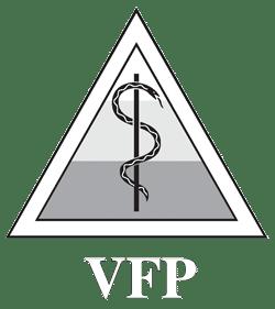 Logo VFP.de